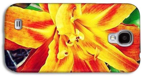 Flower Galaxy S4 Case