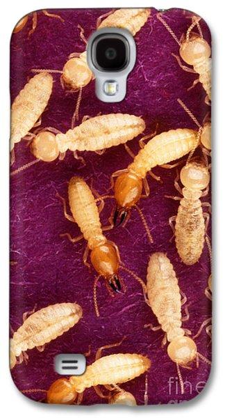 Formosan Termites Galaxy S4 Case