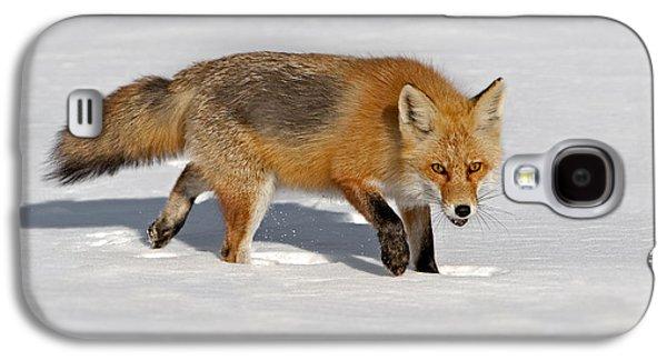 Foxy Lady Galaxy S4 Case by Susan Candelario