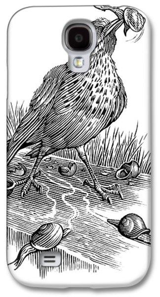Garden Bird Catching Snails, Artwork Galaxy S4 Case