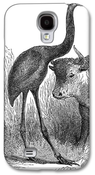 Giant Moa And Prehistoric Cow, Artwork Galaxy S4 Case