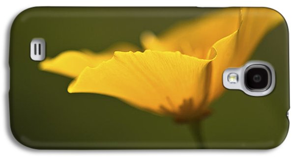 Golden Afternoon. Galaxy S4 Case by Clare Bambers