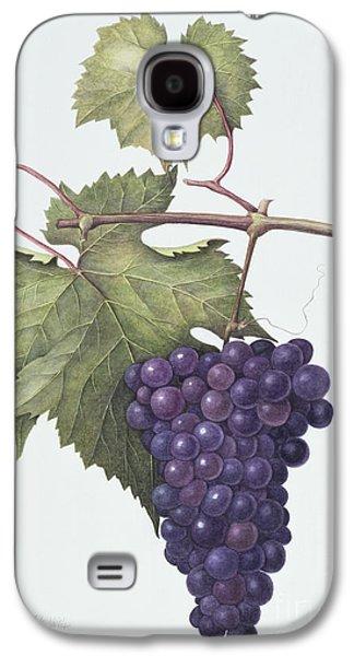Grapes  Galaxy S4 Case by Margaret Ann Eden