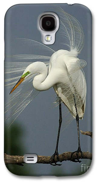 Great Egret Galaxy S4 Case by Bob Christopher