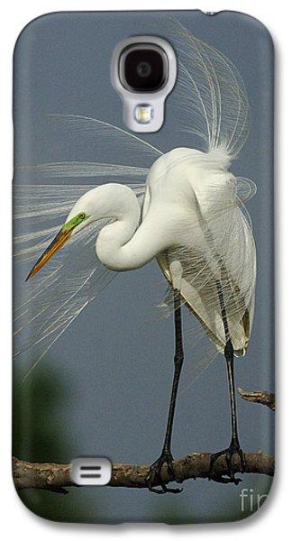 Great Egret Galaxy S4 Case