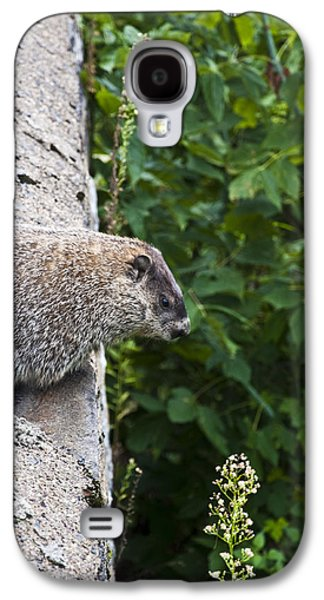 Groundhog Day Galaxy S4 Case by Bill Cannon