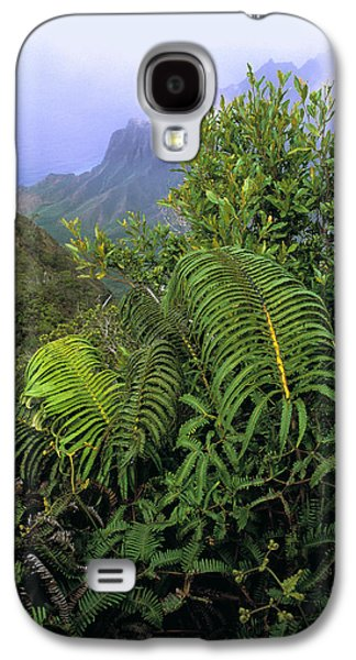 Hapu'u Ferns Galaxy S4 Case