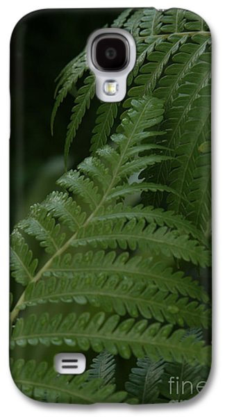 Hapuu Pulu Hawaiian Tree Fern - Cibotium Splendens Galaxy S4 Case