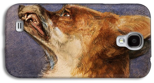Head Of A Fox Galaxy S4 Case