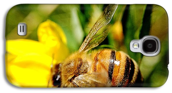 Honey Bee Galaxy S4 Case