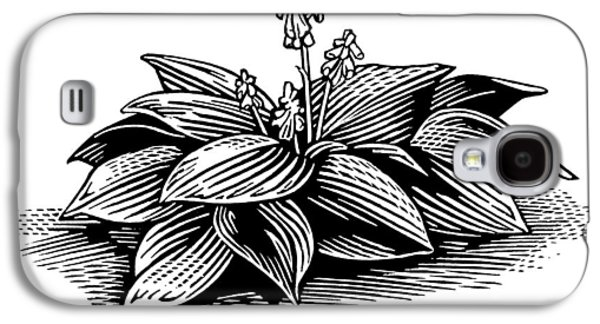 Hosta, Lino Print Galaxy S4 Case by Gary Hincks