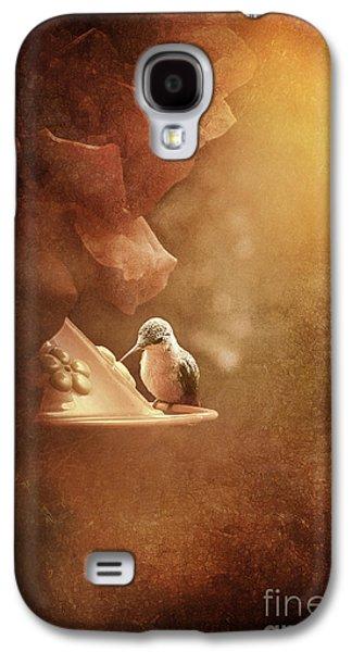 Hummingbird Resting In Golden Light Galaxy S4 Case by Cindy Singleton
