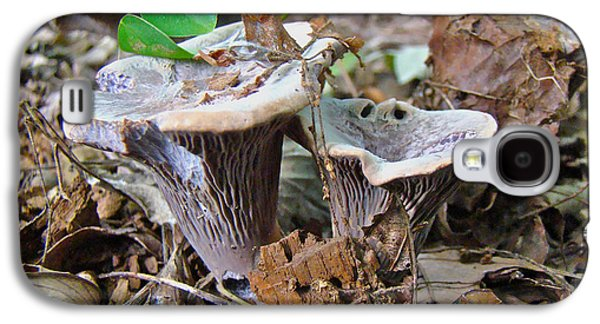 Hygrophorus Caprinus Mushrooms Galaxy S4 Case by Mother Nature