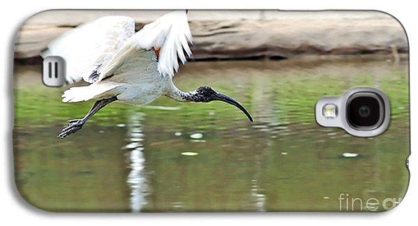Ibis In Flight Galaxy S4 Case by Kaye Menner