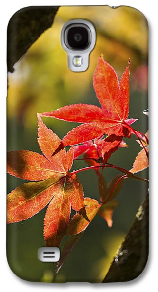 In Between... Galaxy S4 Case by Clare Bambers
