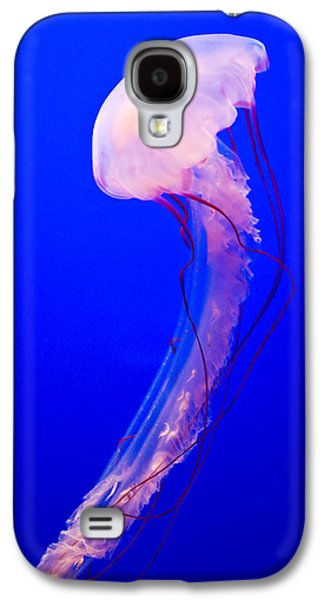 Jellyfish Galaxy S4 Case by Shane Kelly