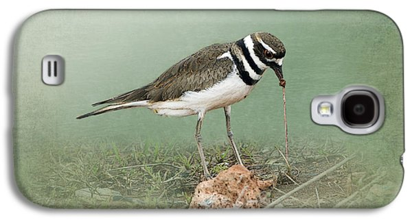 Killdeer Galaxy S4 Case - Killdeer And Worm by Betty LaRue