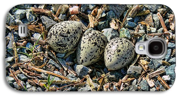 Killdeer Galaxy S4 Case - Killdeer Bird Eggs by Jennie Marie Schell