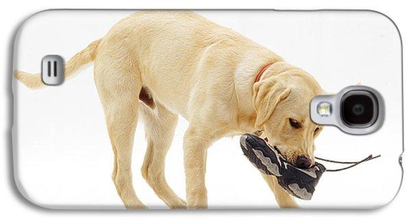 Labrador X Golden Retriever Puppy Galaxy S4 Case by Jane Burton