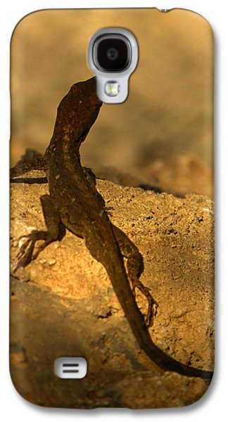 Leapin' Lizards Galaxy S4 Case