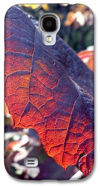 Light Of The Lifeblood Galaxy S4 Case