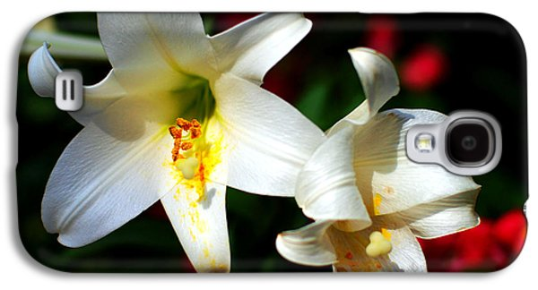 Lilium Longiflorum Flower Galaxy S4 Case by Paul Ge