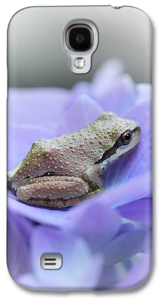 Little Frog On Hydrangea Flower Galaxy S4 Case by Jennie Marie Schell