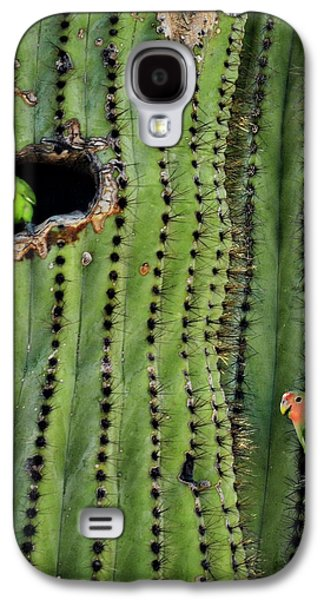 Lovebirds And The Saguaro  Galaxy S4 Case