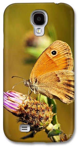 Meadow Brown Butterfly  Galaxy S4 Case by Elena Elisseeva