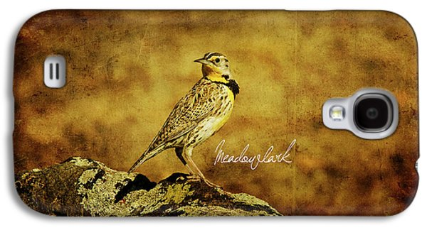 Meadowlark Galaxy S4 Case by Lana Trussell