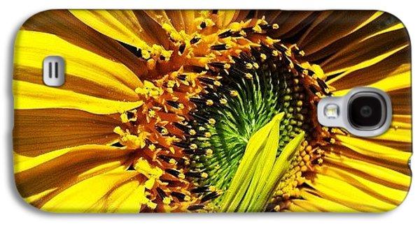 Morning Sun Galaxy S4 Case