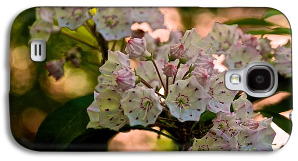 Mountain Laurel Flowers 2 Galaxy S4 Case