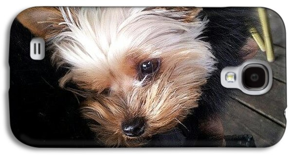 My #princess #dog #yorkie Galaxy S4 Case