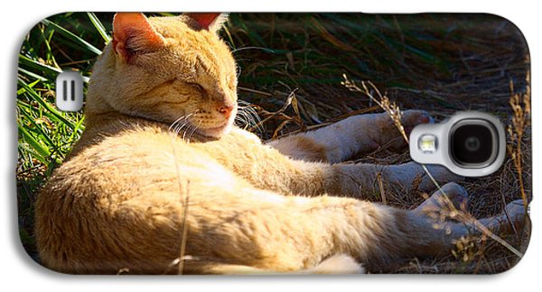 Napping Orange Cat Galaxy S4 Case
