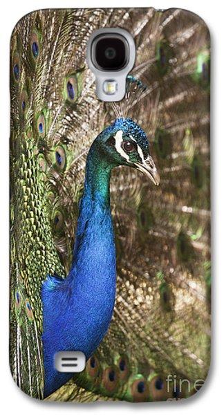 Peacock Display Galaxy S4 Case