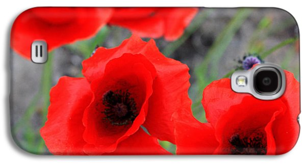 Poppies Of Stone Galaxy S4 Case by Jerry Cordeiro
