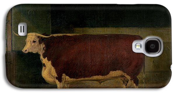 Portrait Of A Prize Hereford Steer Galaxy S4 Case by Richard Whitford
