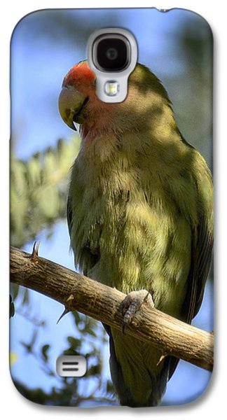 Pretty Bird Galaxy S4 Case by Saija  Lehtonen