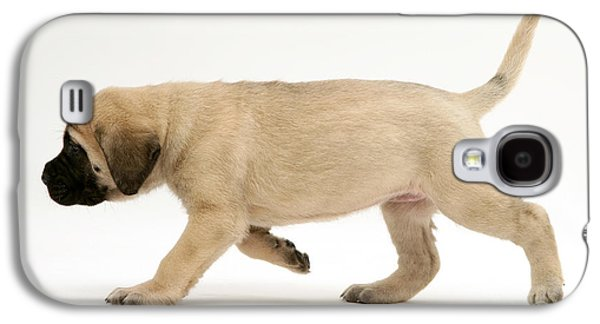 Puppy Trotting Galaxy S4 Case