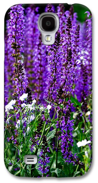 Purple Lavender Flower In Bloom  Galaxy S4 Case by Carol F Austin