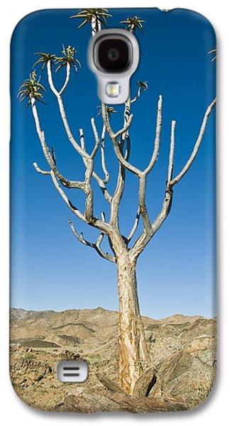 Quiver Tree Galaxy S4 Case