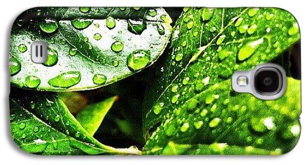 Rainy Day Galaxy S4 Case