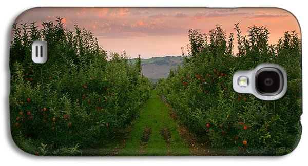 Red Apple Sunset Galaxy S4 Case by Mike  Dawson