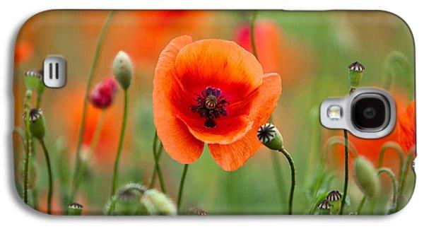 Red Corn Poppy Flowers 07 Galaxy S4 Case by Nailia Schwarz