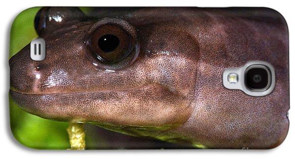 Red Hills Salamander Galaxy S4 Case by Dant� Fenolio