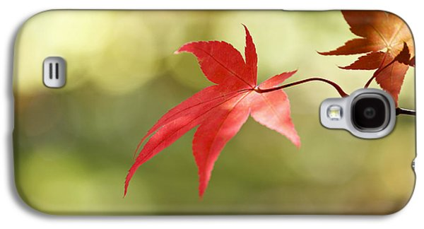 Red Leaf. Galaxy S4 Case by Clare Bambers