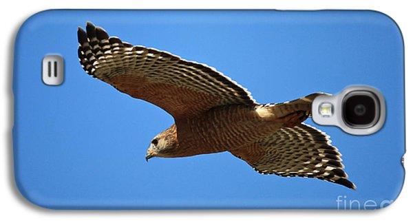 Red Shouldered Hawk In Flight Galaxy S4 Case