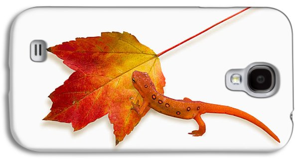 Red Spotted Newt Galaxy S4 Case
