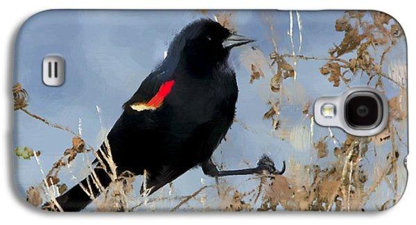 Redwing Blackbird Galaxy S4 Case by Betty LaRue
