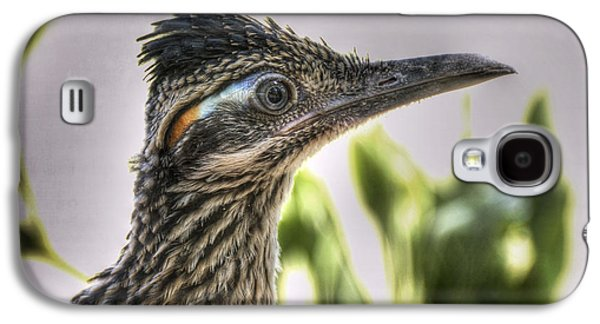 Roadrunner Portrait  Galaxy S4 Case by Saija  Lehtonen